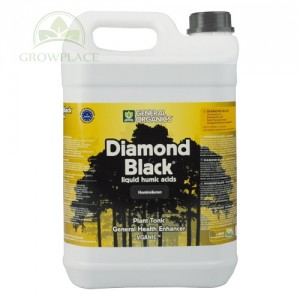 Diamond Black 5 L Kwas Huminowy